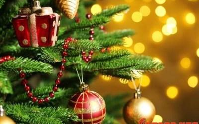 Ya nos estamos preparando para el Sorteo de Navidad ¿y tu, cuanto has compartido?