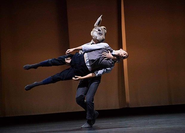 life-rabbit-ballet-1487842614