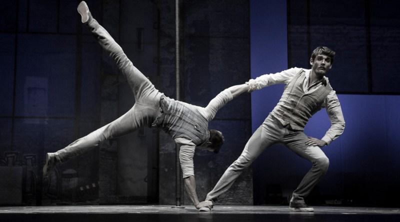Teatro Toniolo: giovedì Night circus   Comune di Venezia