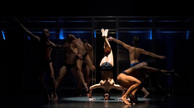 <em>Leonardo da Vinci – Anatomie spirituali</em>, la Compagnia EgriBiancoDanza al Teatro Asteria di Milano