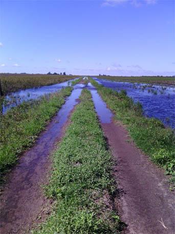 caminos rurales inundados