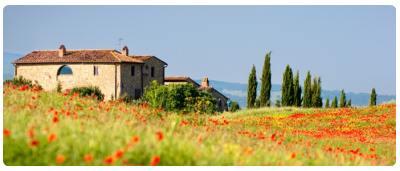 Cosa vedere in Toscana  Cosa visitare in Toscana