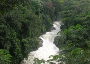 Journey: Thrilling Issues to See and Do When Visiting Calabar