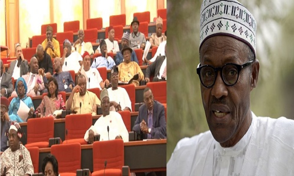 BOMBSHELL!!! BUHARI'S CANDIDATE CHALLENGES NASS - NIGERIANS SHOULD SCRAP SENATE, IT'S A WASTE OF RESOURCES