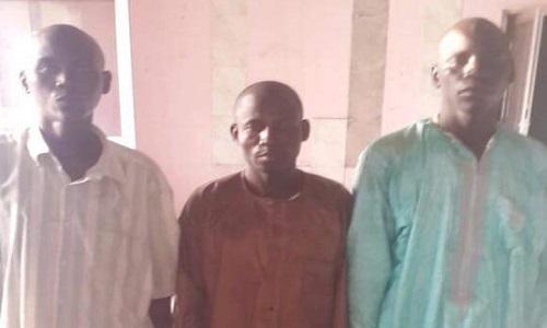 boko-haram-cattle-sellers