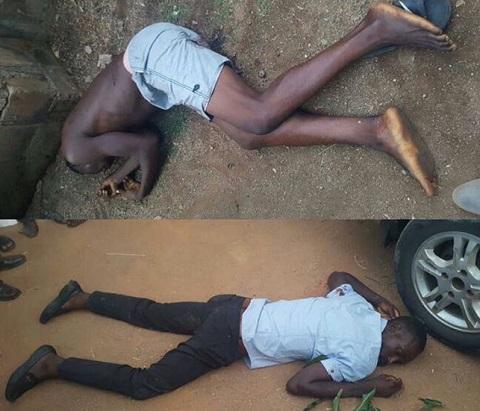 Gunmen kill 12 in Southern Kaduna