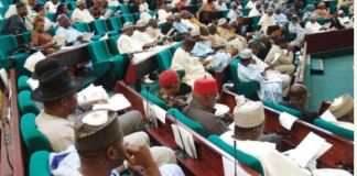 Reps during plenary