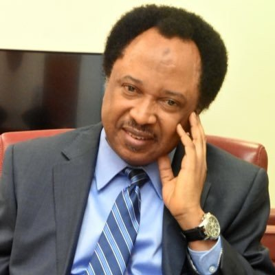 while governors danced at eagle square lives were being wasted shehu sani - Shehu Sani: I was about to condemn the killing of 2 Nigerians in South Africa when he got a call that 20 persons have been killed at home