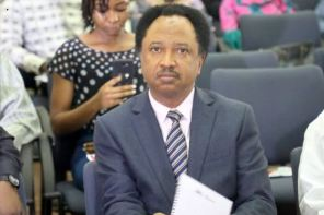 Shehu Sani faults Buhari's 'snatchers of ballot boxes to pay with their life' statement