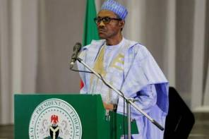 Why we think there's more to Buhari's 'snatch and die' statement