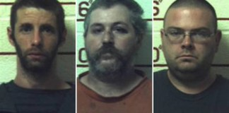 3 men sentenced to 20-41 years for having sex with nine female horses and some other animals