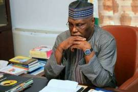 Bustes!!! Documents show that Atiku really paid US firm to unseat Buhari