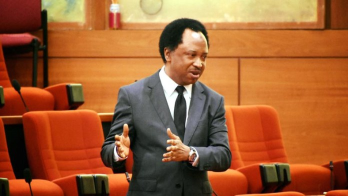 There Are Jobs In The Country Only That The Degrees Acquired By The Children Of The Poor Is Different From The Ones Acquired By The children Of The Poor - Shehu Sanni