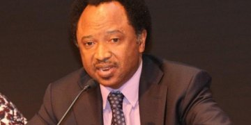 I'm Not Done But, I Will Be Back In 2023: Shehu Sani