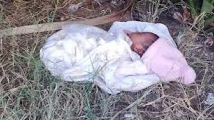 Baby found in Bush