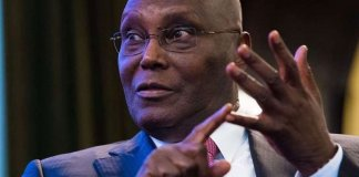 Atiku Asked To Return To Cameroon Within 21 Days