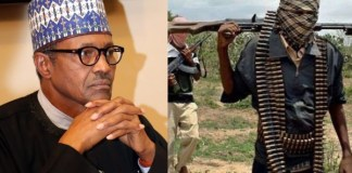 Those Kill And Shout 'Allah Akbar' Are Not For God – Buhari