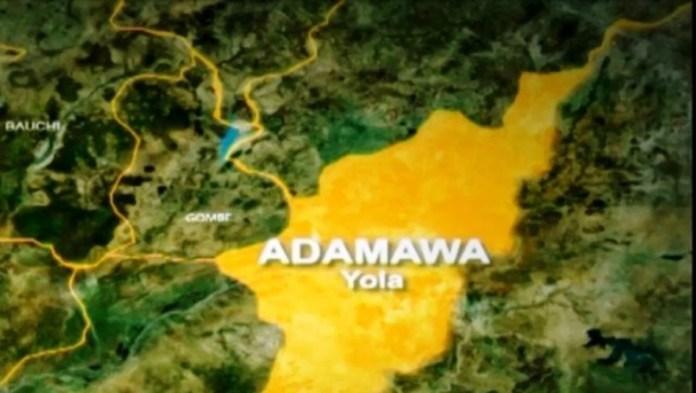 Adamawa on map