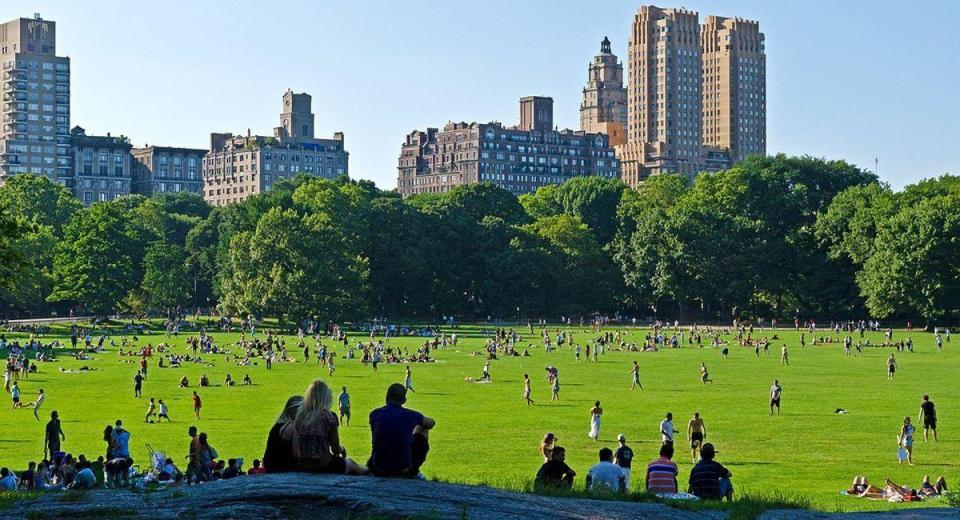 central park Tourist Attractions in New York City