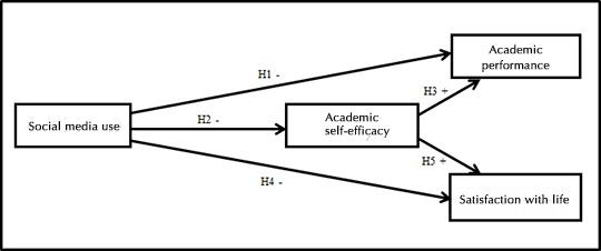 A deeper look into the complex relationship between social