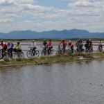 'Roda l'Albufera', excursión por el Parque Natural