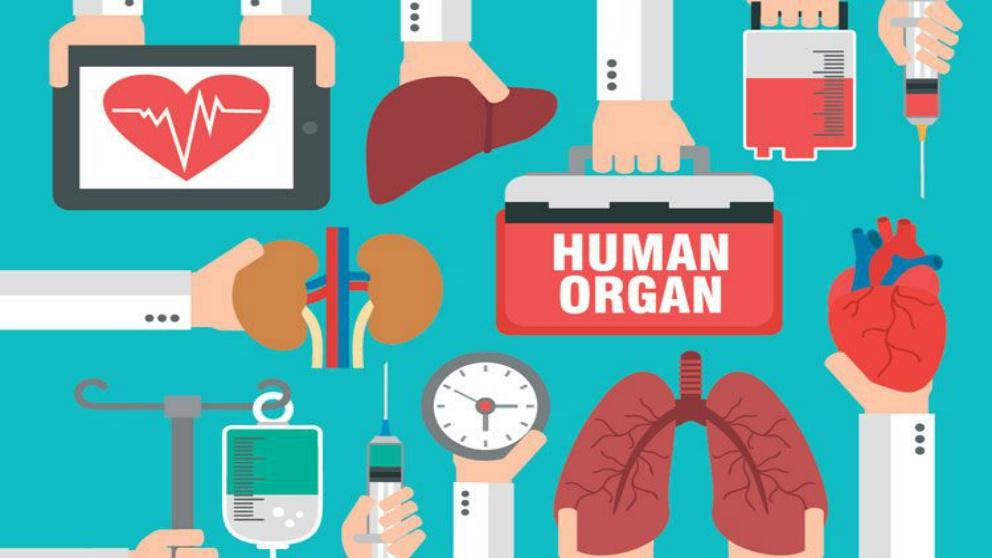 Se plantea la donación de órganos de personas aún vivas
