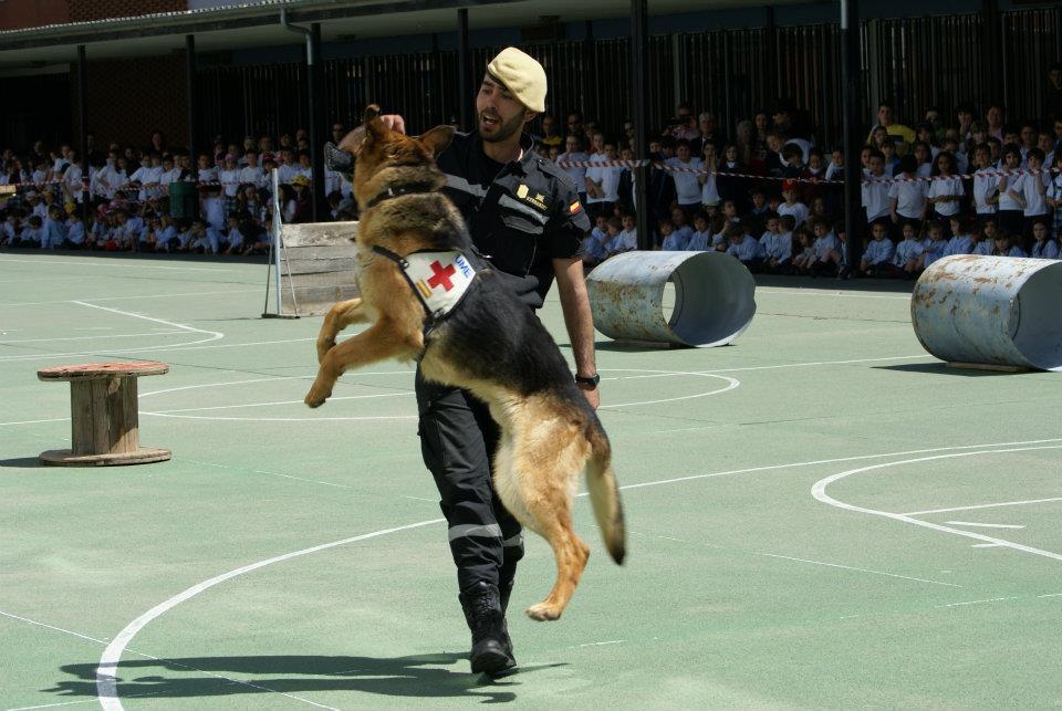 Bendición de los perros de la UME en la UCV/img archivo