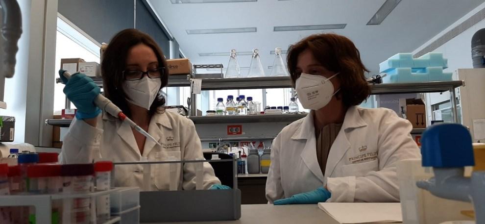 Investigadores valencianos del CIPF prueban con éxito una nueva terapia para el cáncer de mama triple negativo/GVA