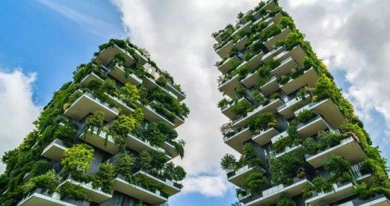 Bonus verde 2020: abolizione o proroga? Detrazione in bilico