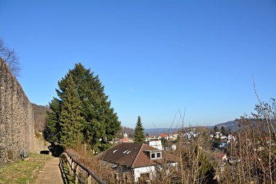 Lindenfeld07
