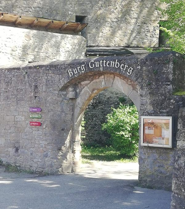 Burg Guttenberg über dem Neckar