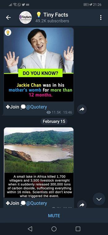 Paparan nightmode pada Telegram