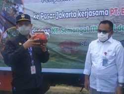 Koptan Milenial dan DPC Pemuda Tani HKTI Sidrap Kirim Perdana 2.000 Tandan Pisang ke Jakarta