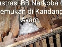 Narkoba 1 Kg Milik DPO Asal Sidrap, Ditemukan BNNP Sulsel Dikandang Ayam