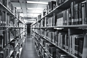 ORTIZ - Biblioteca1