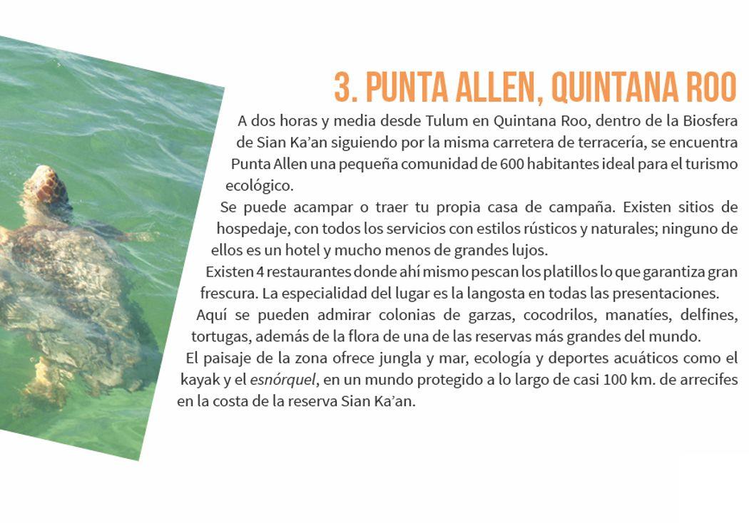 3. Punta Allen, Quintana Roo