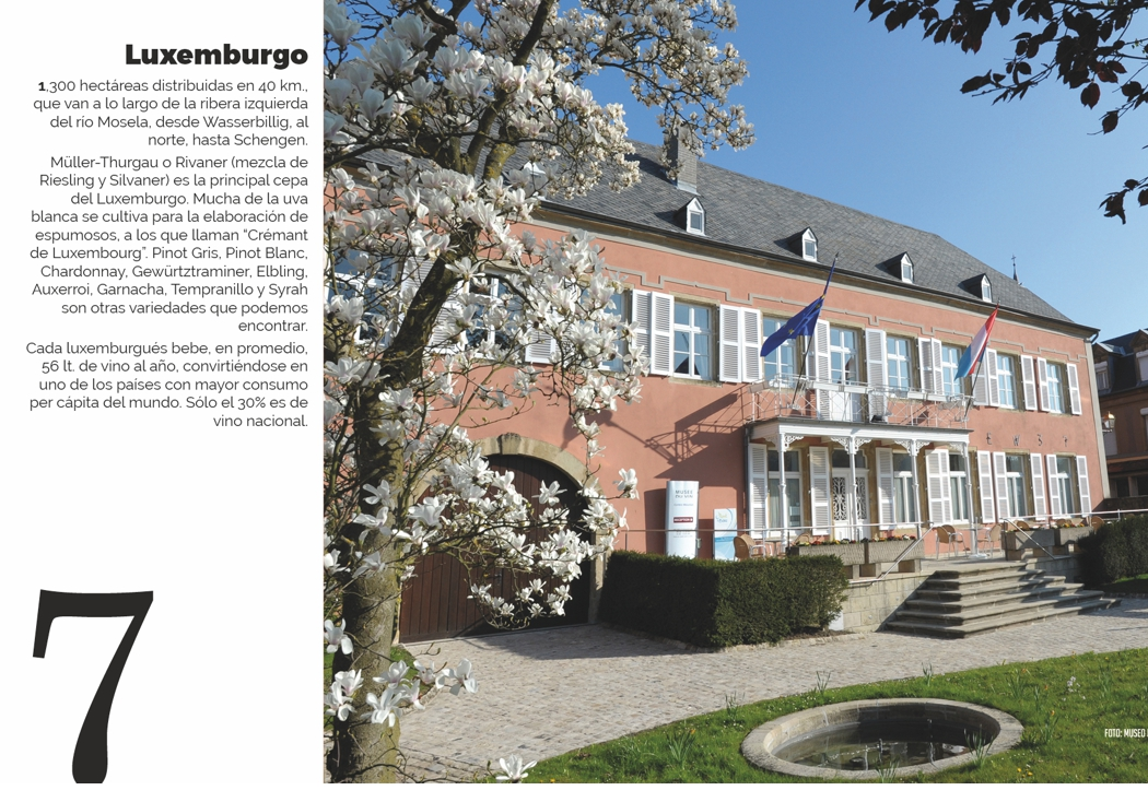 7. Luxemburgo