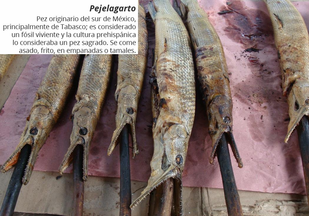 Pejelagarto
