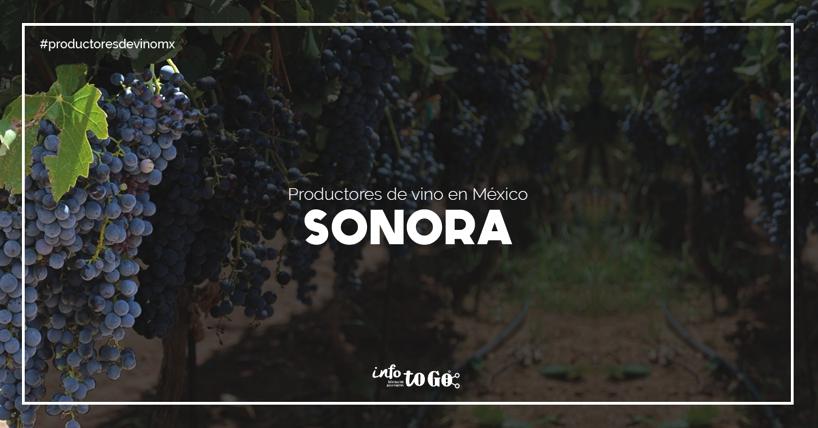 Estado productor de vino: Sonora