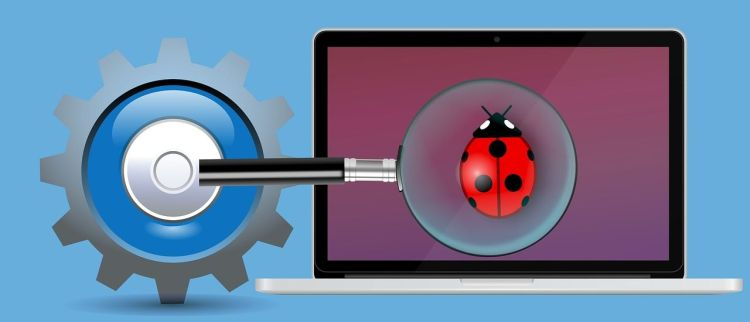 Color photo of a bug on a laptop screen with a magnifying glass in front - used to illustrate the meaning of software tester.
