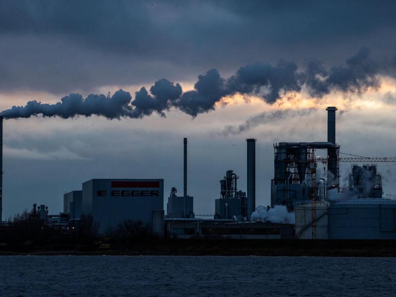 Aus den Schornsteinen der Holzwerke am Wismarer Hafen steigt Rauch auf. Foto: Jens Büttner/dpa-Zentralbild/dpa