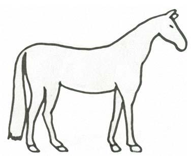 Pferd Malvorlage zum Ausdrucken - Pferdeausmalbild