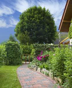 Gartenplaner Programm  kostenlos am Computer Garten planen