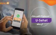 USehat-MicroEnsure
