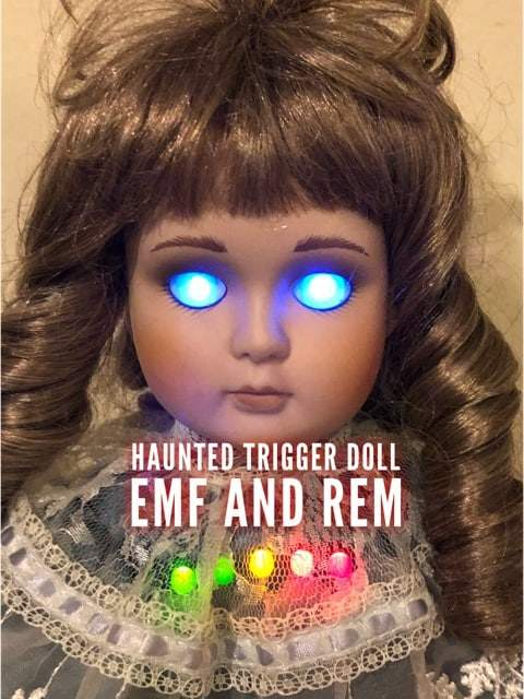 Haunted Doll REM and EMF