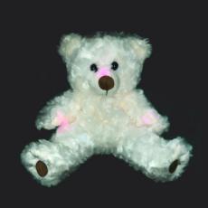 Paranormal Teddy Bear REM