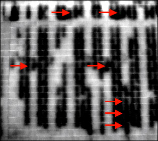 blockwall231 1 - Block Wall Scan Infrared