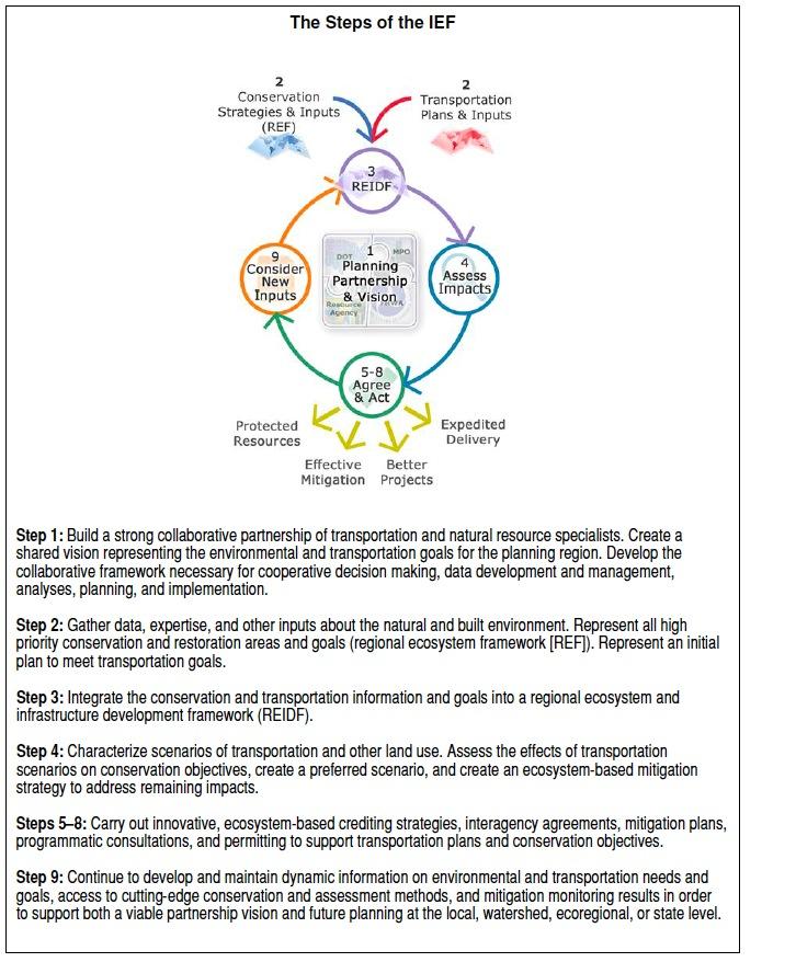 Figure ES.1. Steps of the Integrated Ecological Framework.