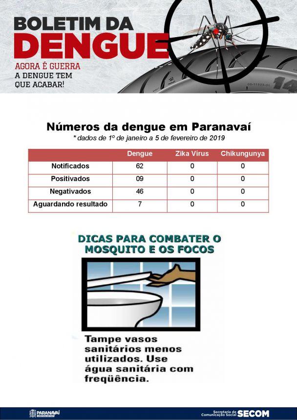 Boletim da Dengue - 1º de janeiro a 6 de fevereiro de 2019
