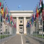 240 plazas para trabajar en la ONU en varios países